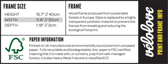 Print and Frame Information panel